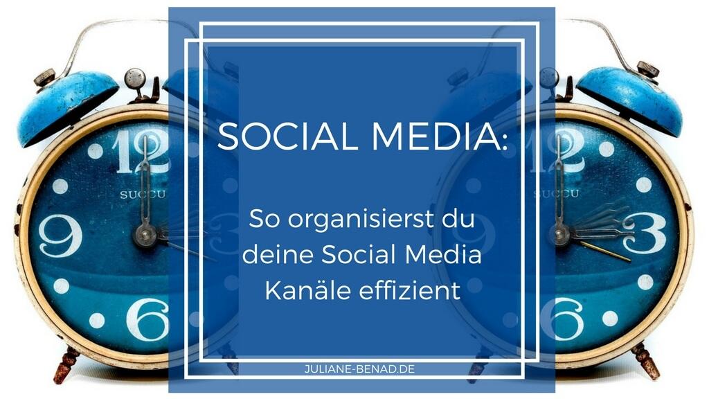So organisiert du deine Social Media Kanäle effizient